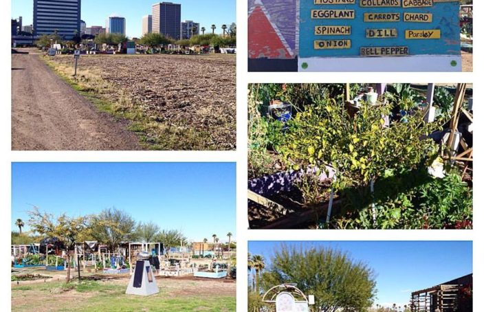 PHX RENews, urban garden, community space, Phoenix